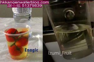 Izumi_WashFruit_Enagic
